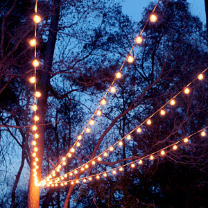 & A Canopy of String Lights in our Backyard | Gray House Studio