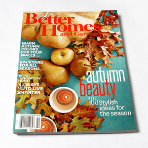 Better Homes & Gardens {I Did it} Feature